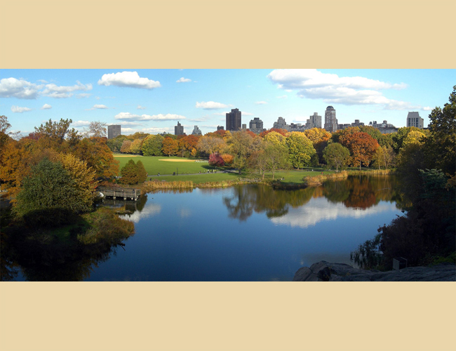 SSSA photo contest second place NYC central park